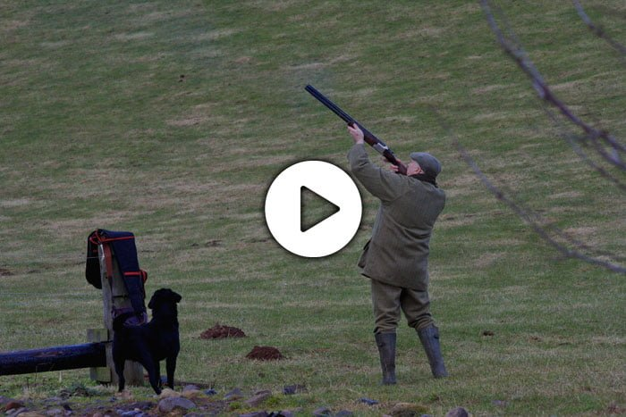 The best UK fieldsports video sites